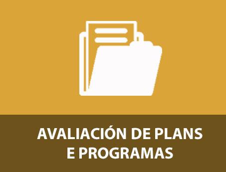AVALIACIÓN DE PLANS E PROGRAMAS